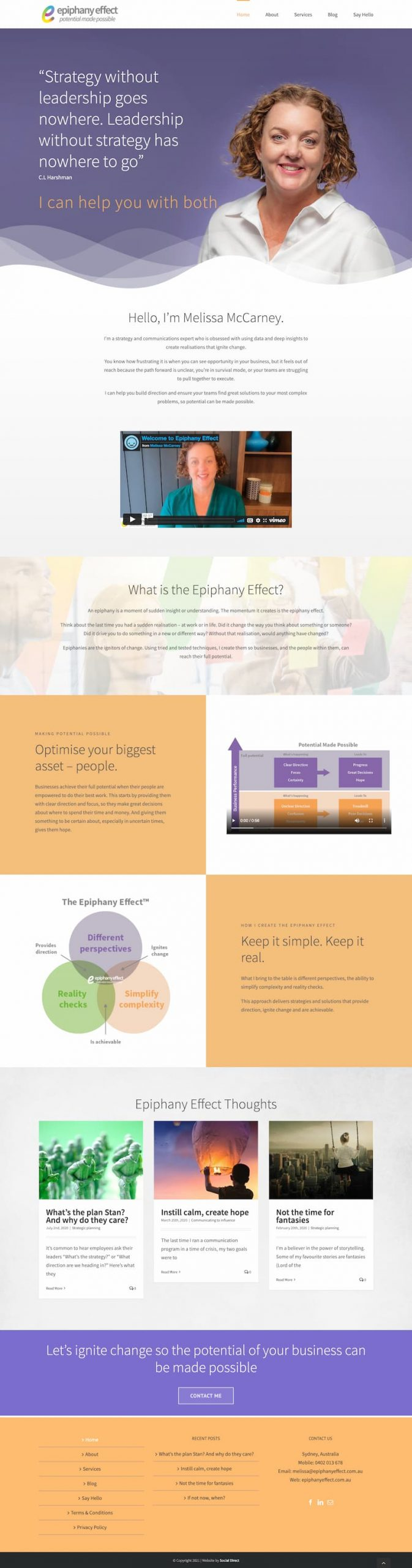 Website for a business consultant